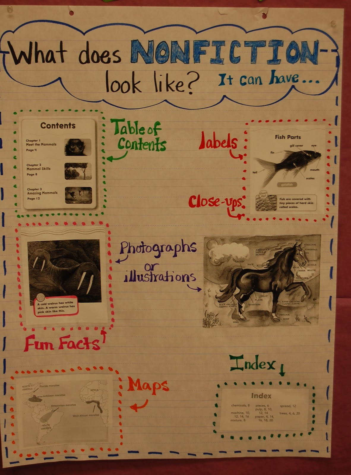 New school year  Texts and Text features on Pinterest How to write a book report on a nonfiction book