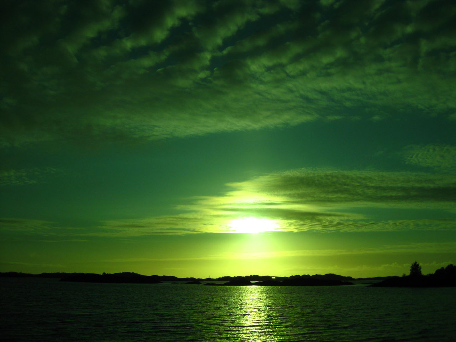 sunset green background -#main