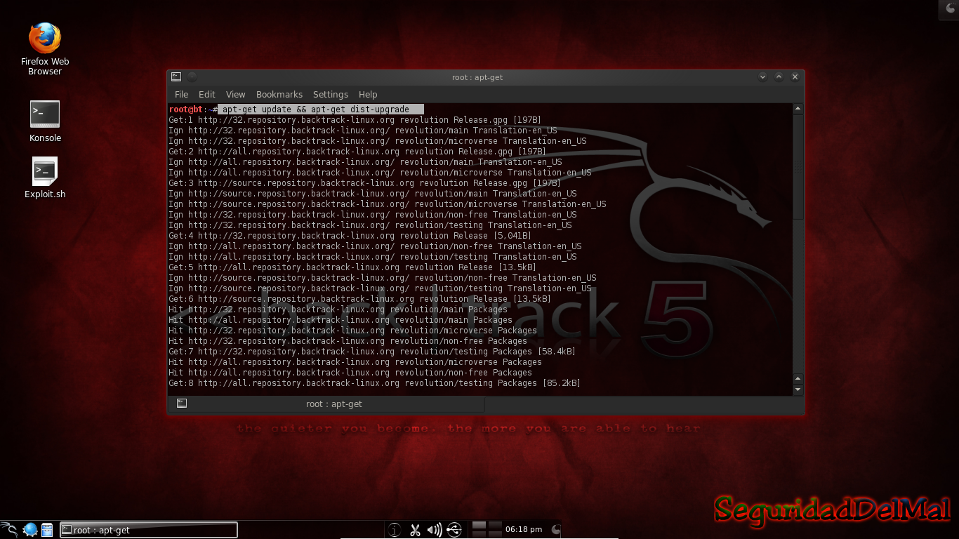 I download backtrack 5 r2 and then i went to install