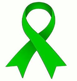 Llaç verd per una educació pública i de qualitat:         Prou retallades !!