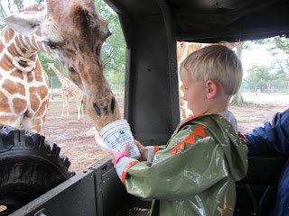 Clay got up close and personal with the giraffes.