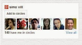 widget pengikut google+