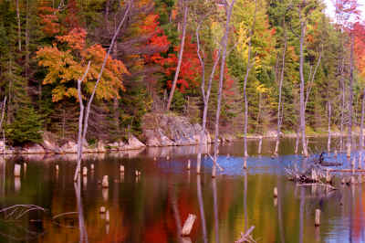 Mine ponds in the fall 1