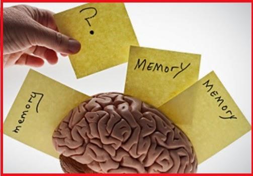 tinggat daya ingatan