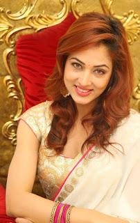 Actress Vidisha Srivastava Latest Pictures in Saree at Harinath Wedding Reception  12.jpg