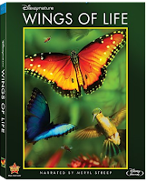 Wings Of Life (2013) Online Latino
