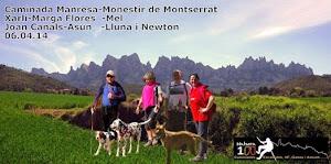 Caminada de Manresa al Monestir de Montserrat