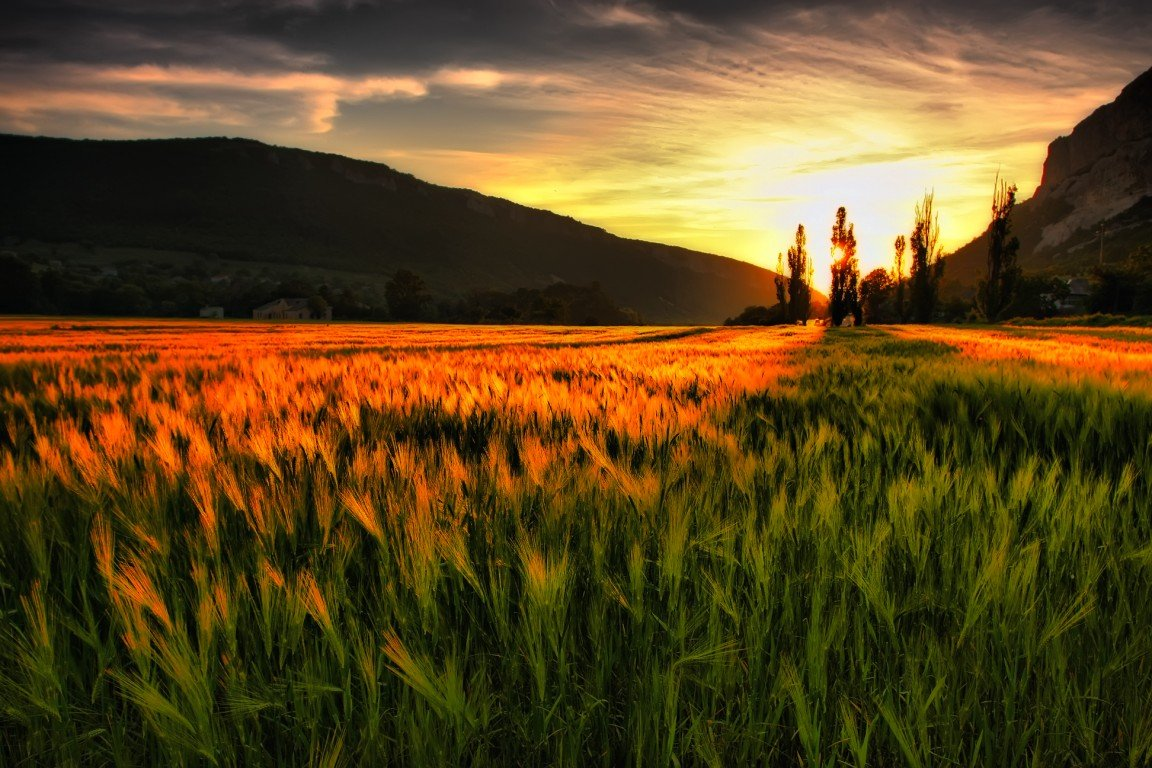 Cool Wallpapers Natural Scenes HD Wallpapers Download Free Images Wallpaper [1000image.com]