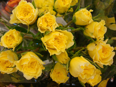 bouquet yellow roses dsc00909