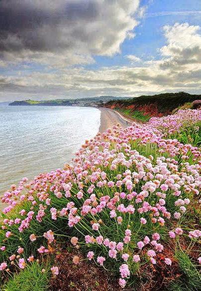 Dawlish, Devon, England:
