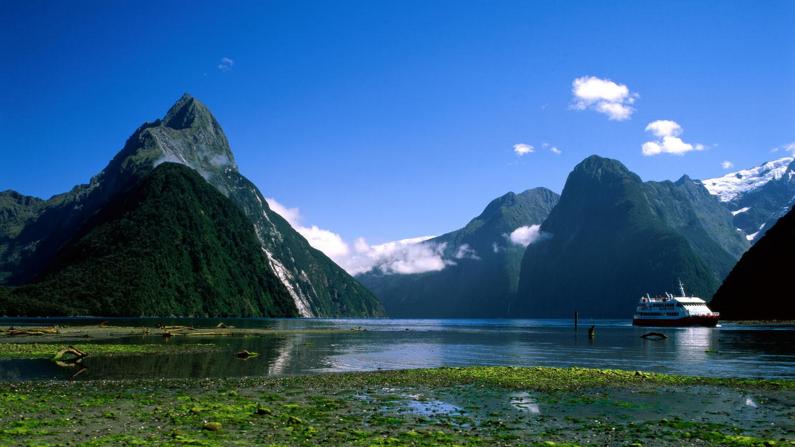 Milford Sound Scenic Cruise New Zealand