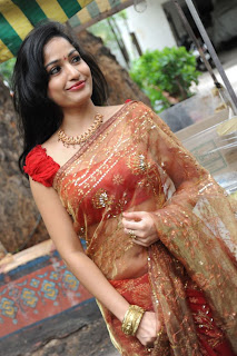 madhavi latha  Pictures in saree 8.jpg