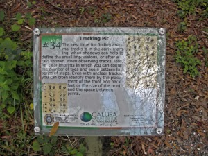 Info Trail Calusa Nature Center & Planetarium, Fl