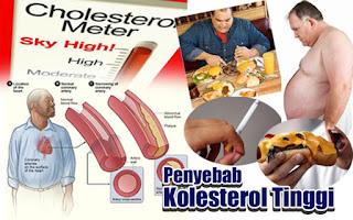 Makanan Yang Mengandung dan Penyebab Kolesterol