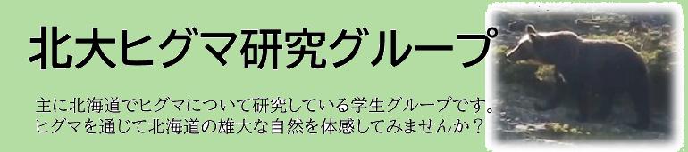北大ヒグマ研究グループ