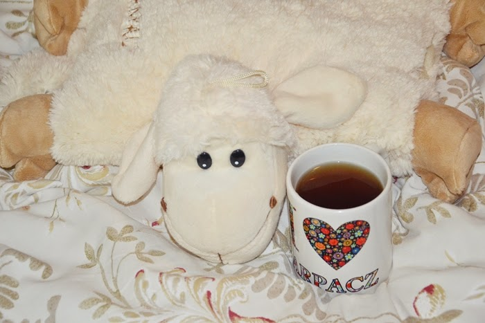 owca herbata
