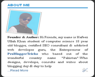About me widget for blogger blog