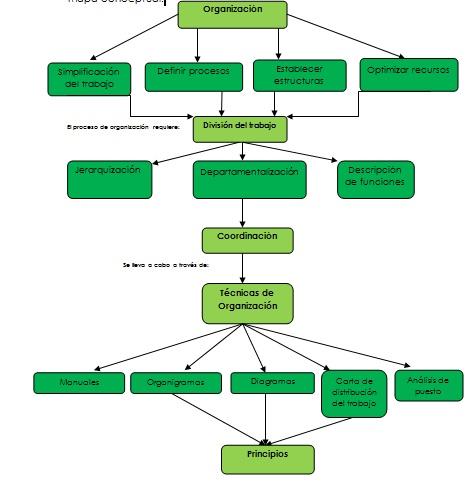Organizaci n concepto organizacion for Concepto de organizacion de oficina