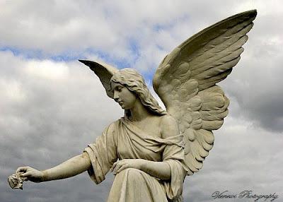 Zdjęcie przedstawiające posąg anioła z różą w ręku, znajdującego się na cmentarzu w Bydgoszczy, inny punkt widzenia, zdjęcie z boku, kadr poziomy