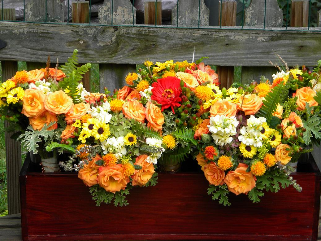 wedding flowers from springwell september 2011. Black Bedroom Furniture Sets. Home Design Ideas