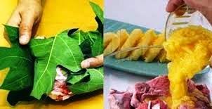 Tips Mudah Mengawetkan Daging Kambing