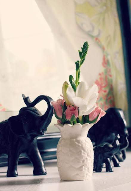 home details - catherine masi