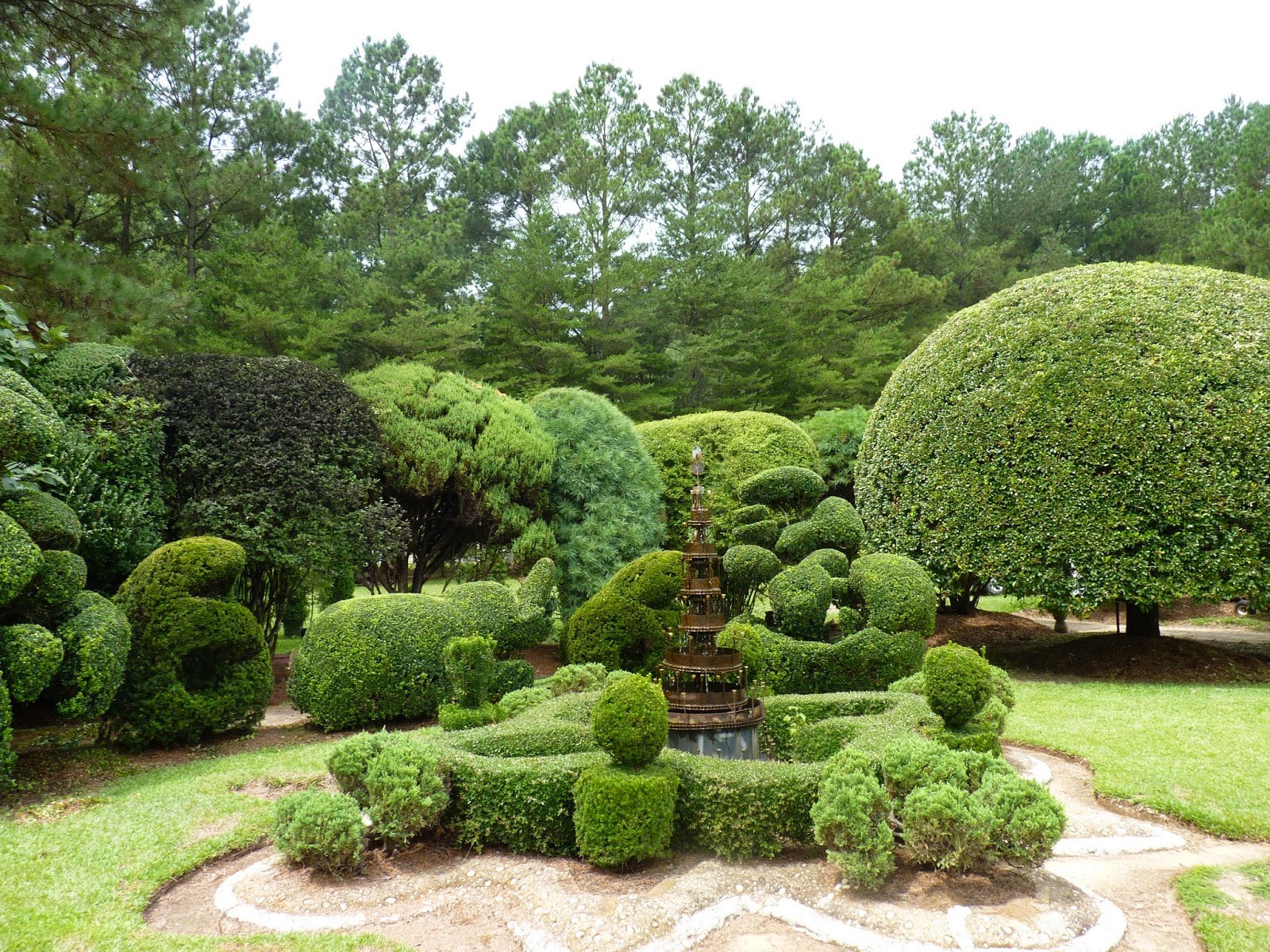 the unpaved road pearl fryar 39 s topiary garden