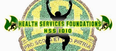 HSS 1010: Health Services Foundations
