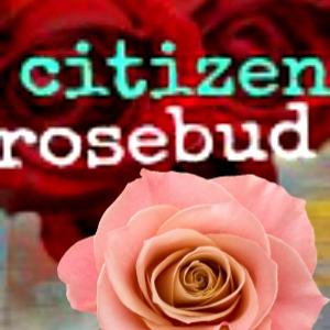 http://www.thecitizenrosebud.com/