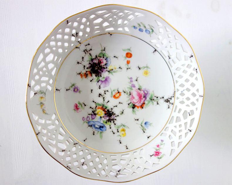 Nuevos platos de porcelana repleto de hormigas pintados a mano por Evelyn Bracklow