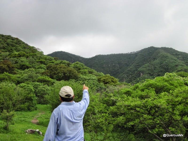 Rutas de ascenso a la Chupinaya y a la Sierra el Trevesaño - Chapala
