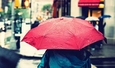 telah datang dan tentu memperlihatkan berkah tersendiri bagi kehidupan  Menguntungkan Di Musim Hujan