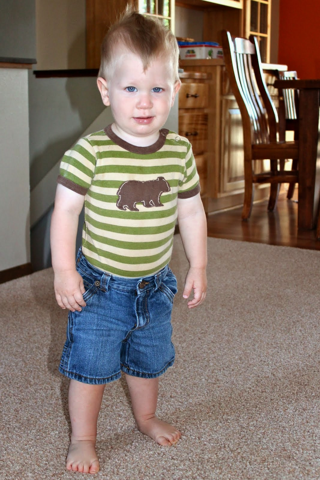 baby bear Ezra