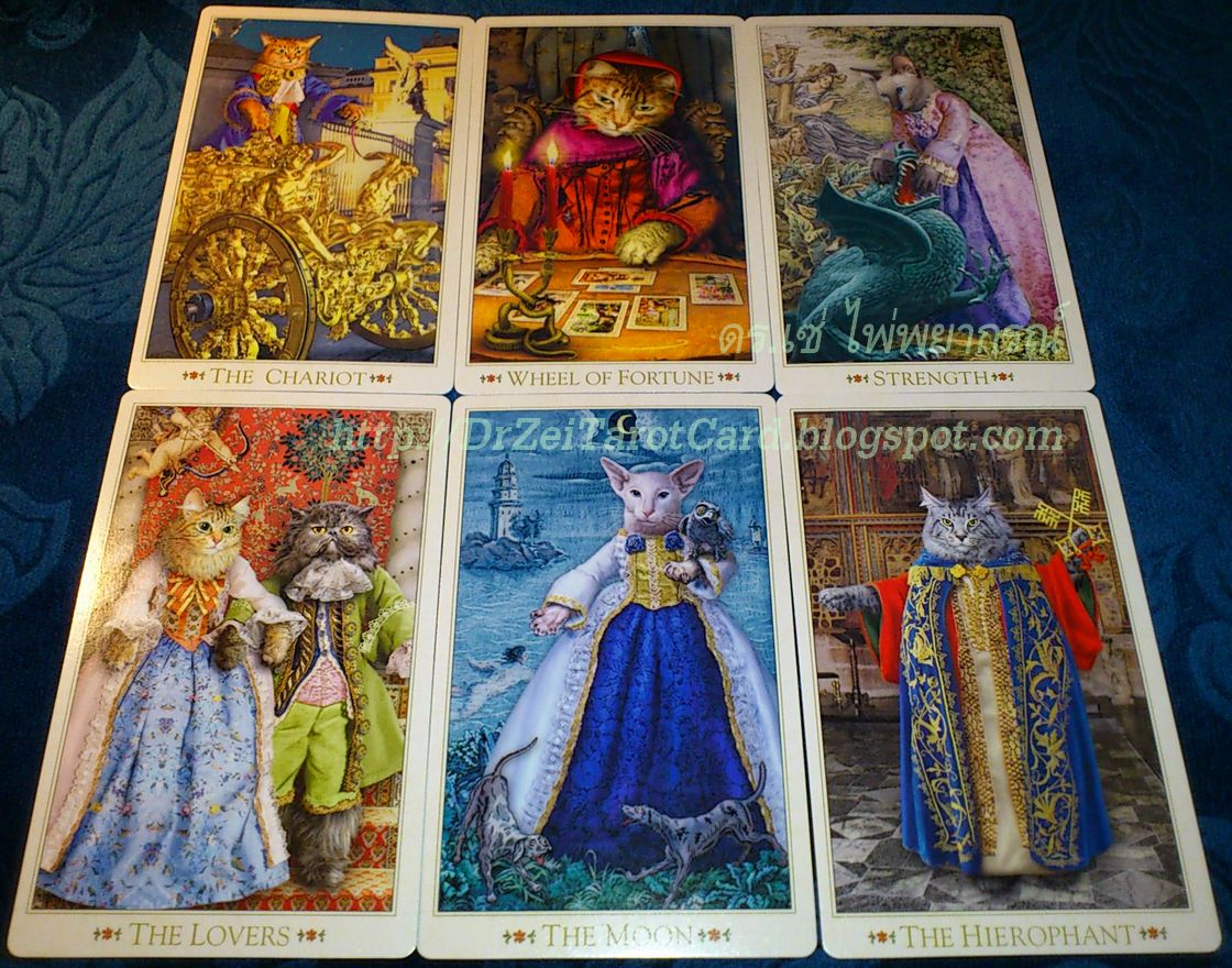 Baroque Bohemian Cat Tarot Major Arcana Cards Lovers Wheel of Fortune Chariot Hierophant Strength Moon ไพ่ทาโร่ แมว ไพ่ทาโรต์ ไพ่ยิปซี ไพ่ยิบซี โบฮีเมียน แคทส์ ทาโรต์ บาร๊อค บาร๊อก บาร็อค บาโร บาโร็ค บาโร๊ก โบฮีเมี่ยน เดอะมูน ชาริออต สังฆราช ไพ่พระจันทร์