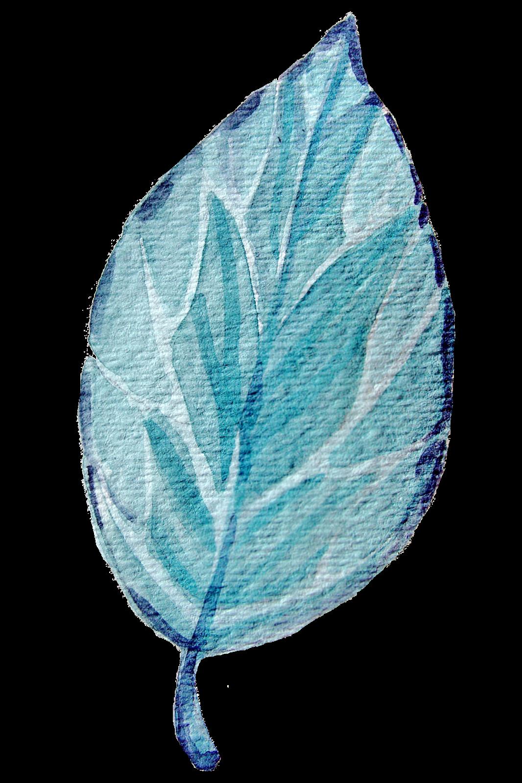 on leaf blue - photo #1
