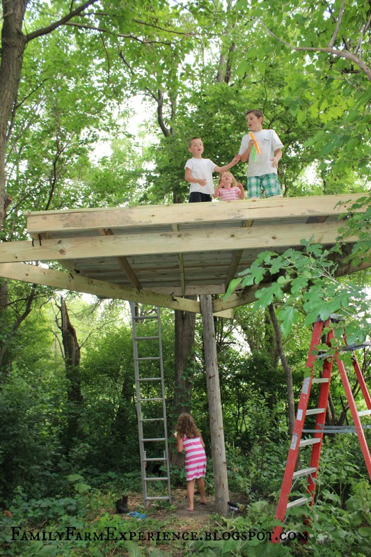 Family farm experience diy how to build your own treehouse for Building a house where to start