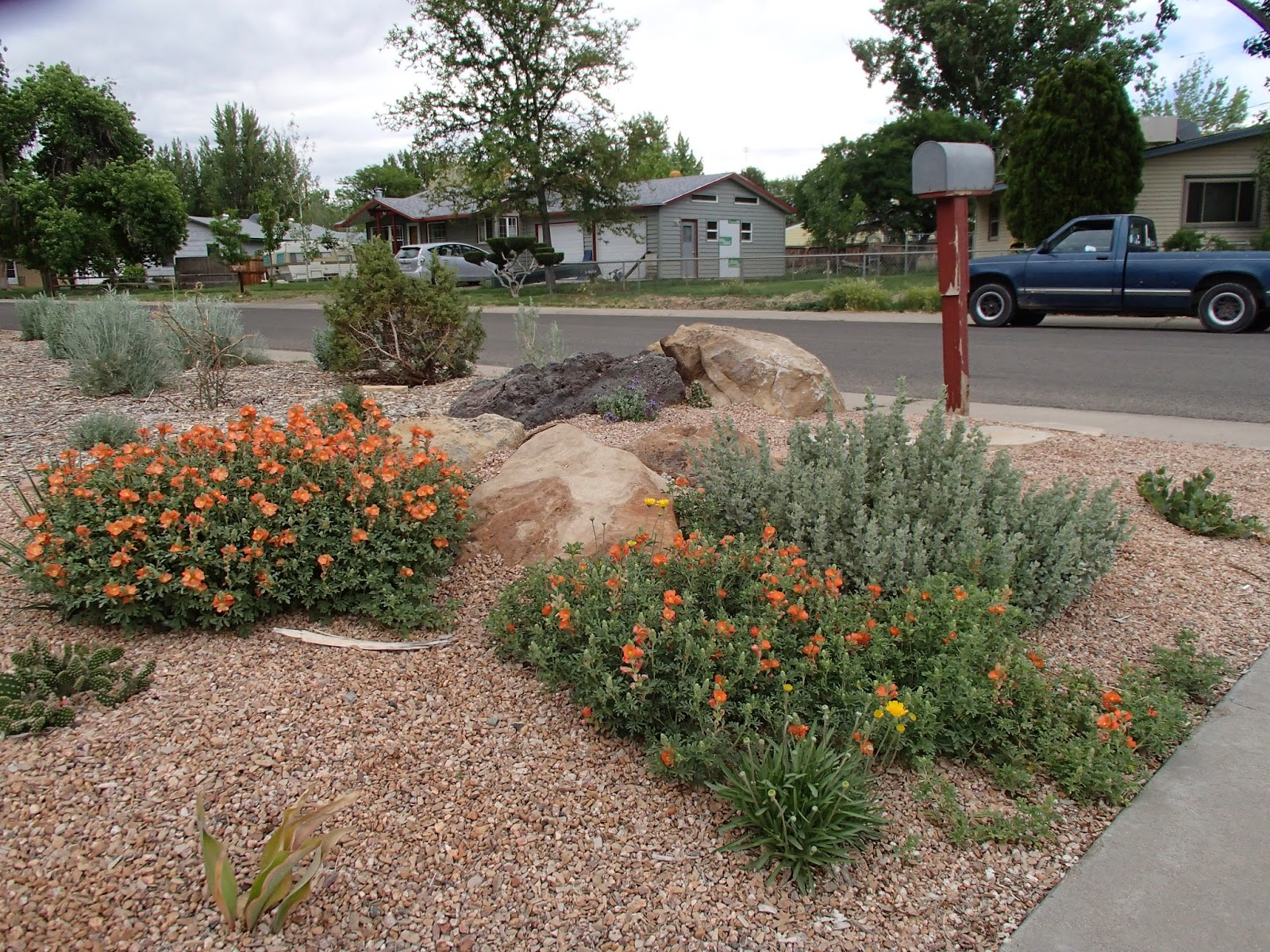 Paintbrush Gardens LLC PORTFOLIO