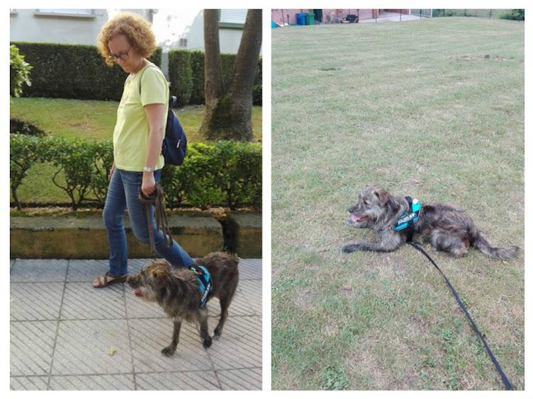 Madre de Alba con su perrita de 7 meses muy activa y tiraba mucho de la correa.