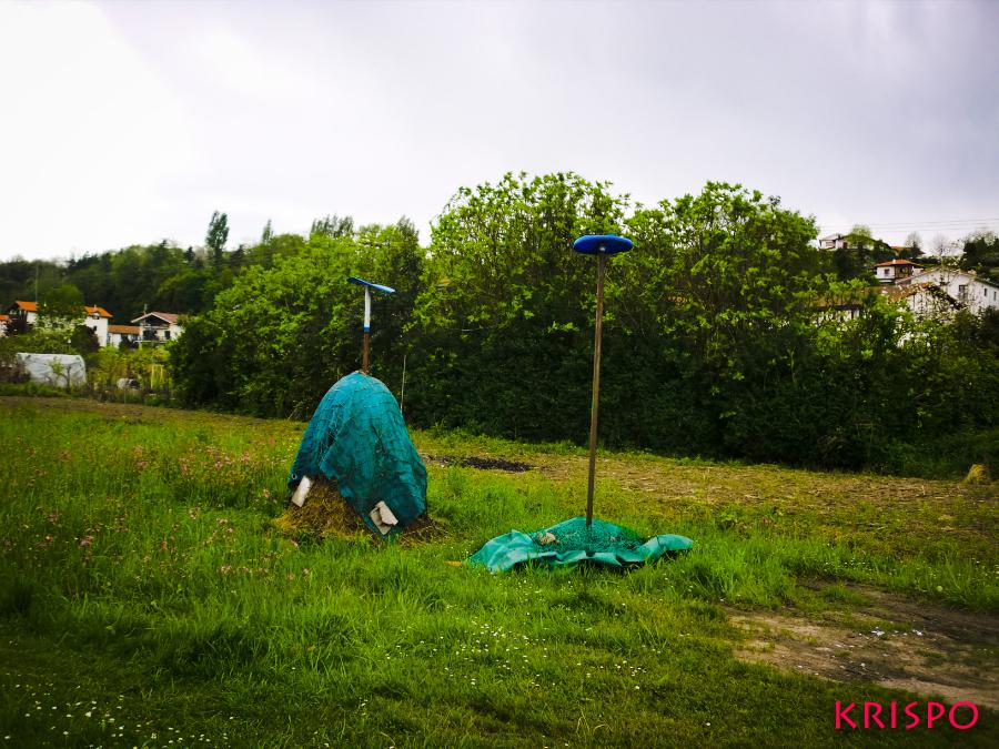 hierba seca apilada en las huertas de hondarribia