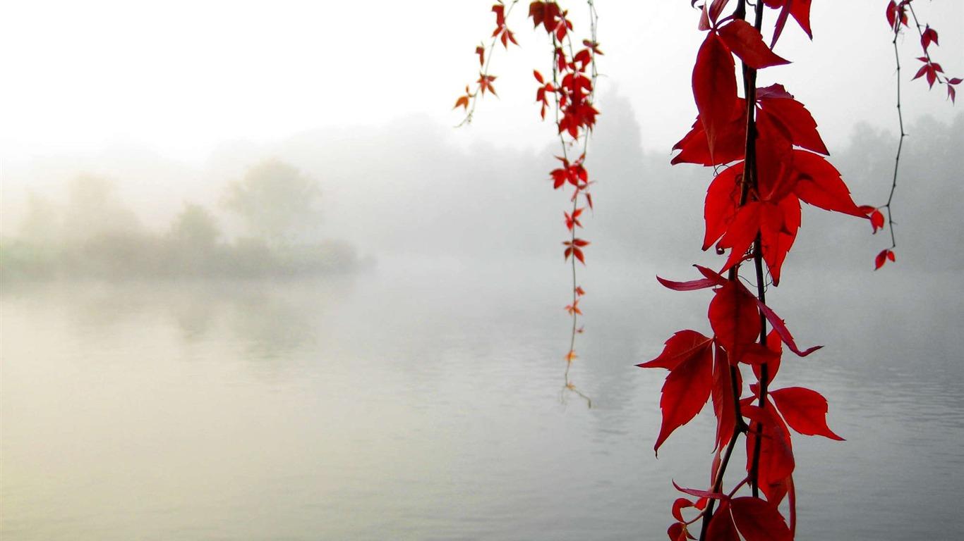 http://2.bp.blogspot.com/-959eN_aKMJ8/UB_39SWj32I/AAAAAAAACug/eBnH1RtB5rs/s1600/tranquil_lake_wallpaper_1366x768.jpg
