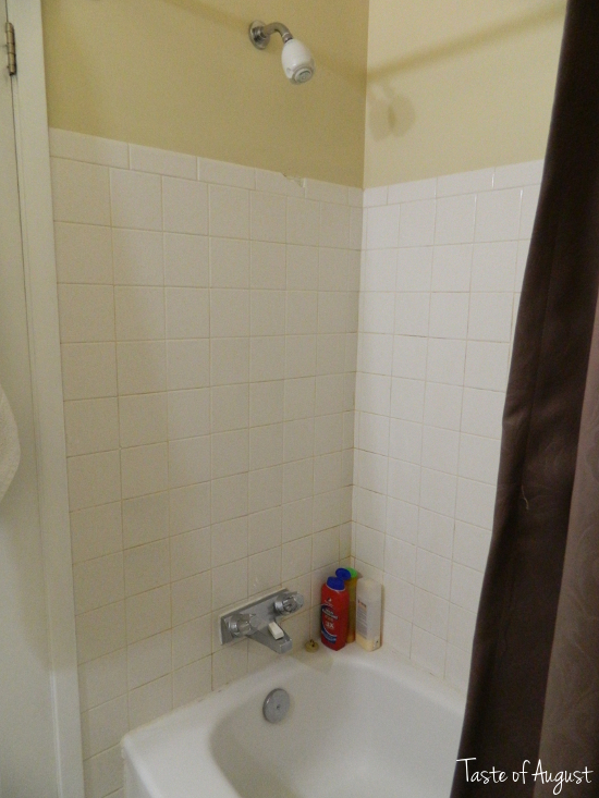 Taste of august bathroom reno reveal for Shower reno