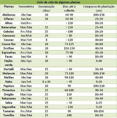 DO JOÃO: Data sementeira, calendário lunar e ciclo vida plantas