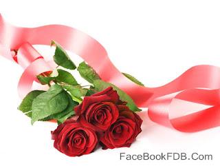 Feliz San Valentín imagenes con frases