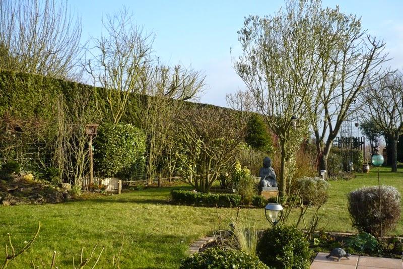 le jardin de pacalou f vrier au jardin