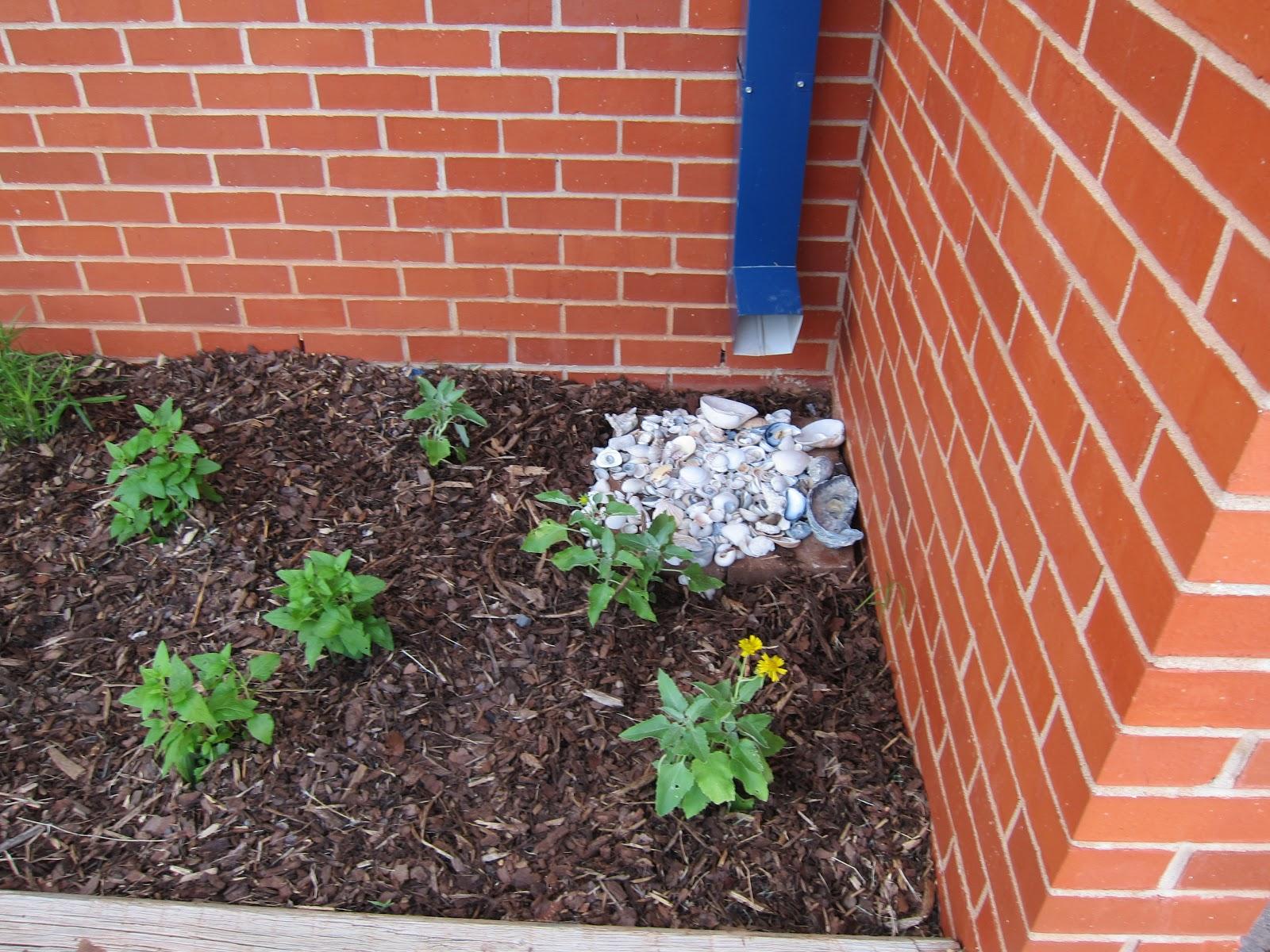 Butterfly Garden Project - Cordell Elementary School: Gutter Problem ...