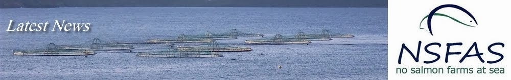 No Salmon Farms at Sea
