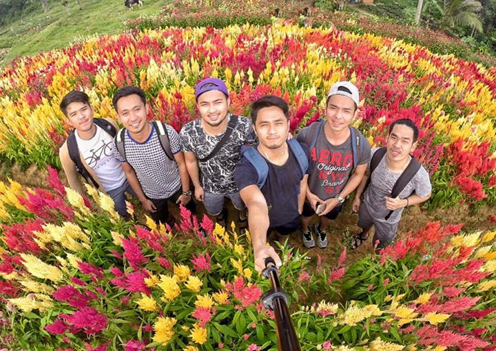 Why Visit Sirao Flower Farm In Cebu? Check This Video And