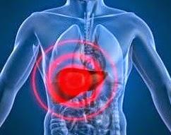 Sistema como hacer para quemar la grasa del abdomen periodo