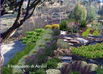 progetto giardino con piante perenni