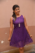 Geethanjali glam pics at SSD audio-thumbnail-20